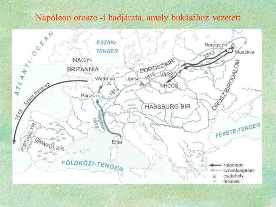 Napóleon oroszo.-i hadjárata, amely bukásához vezetett
