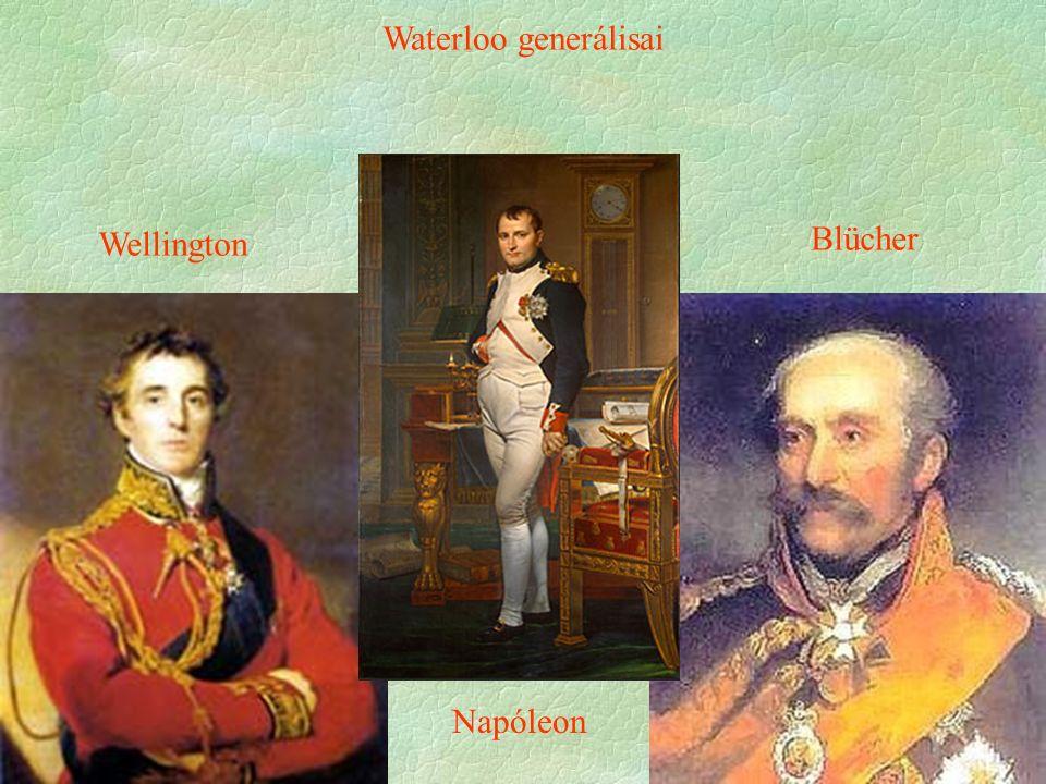 Napóleon Wellington Blücher Waterloo generálisai