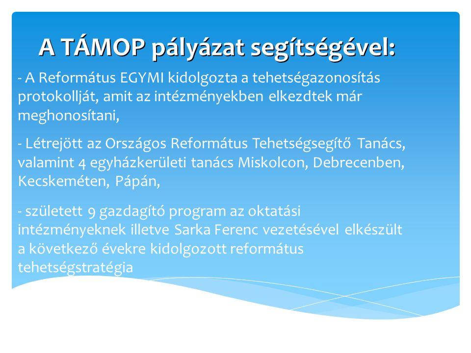A TÁMOP pályázat segítségével: - A Református EGYMI kidolgozta a tehetségazonosítás protokollját, amit az intézményekben elkezdtek már meghonosítani, - Létrejött az Országos Református Tehetségsegítő Tanács, valamint 4 egyházkerületi tanács Miskolcon, Debrecenben, Kecskeméten, Pápán, - született 9 gazdagító program az oktatási intézményeknek illetve Sarka Ferenc vezetésével elkészült a következő évekre kidolgozott református tehetségstratégia