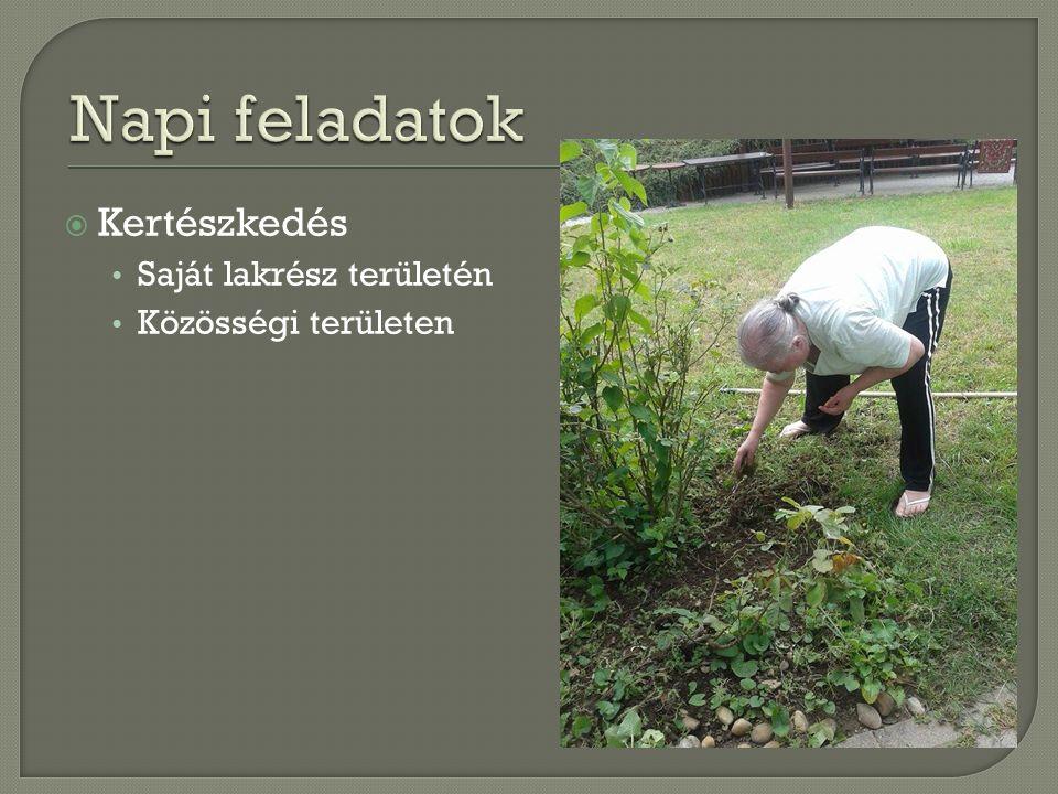  Kertészkedés Saját lakrész területén Közösségi területen