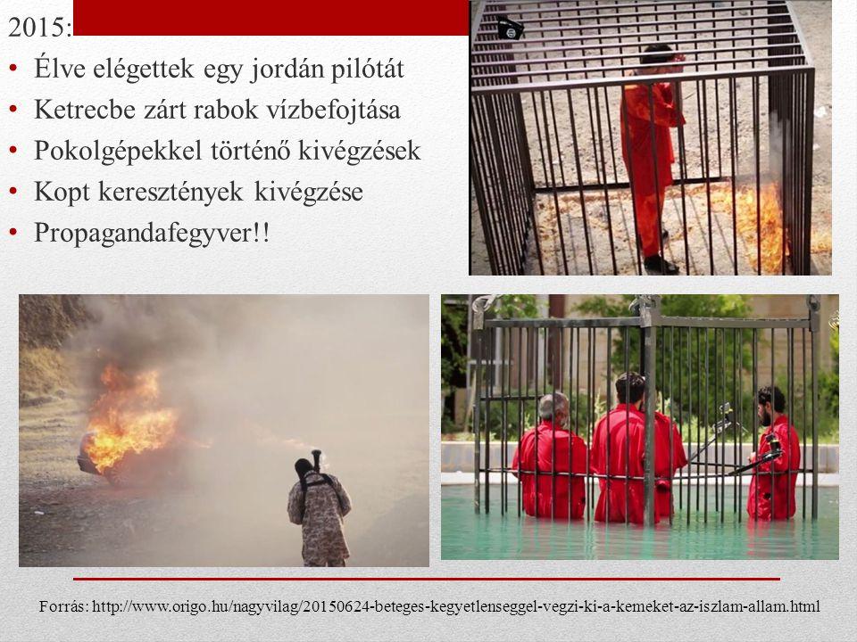 2015: Élve elégettek egy jordán pilótát Ketrecbe zárt rabok vízbefojtása Pokolgépekkel történő kivégzések Kopt keresztények kivégzése Propagandafegyver!.