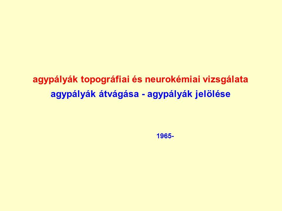 agypályák topográfiai és neurokémiai vizsgálata agypályák átvágása - agypályák jelölése 1965-