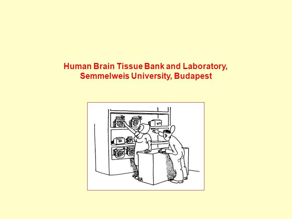 Human Brain Tissue Bank and Laboratory, Semmelweis University, Budapest