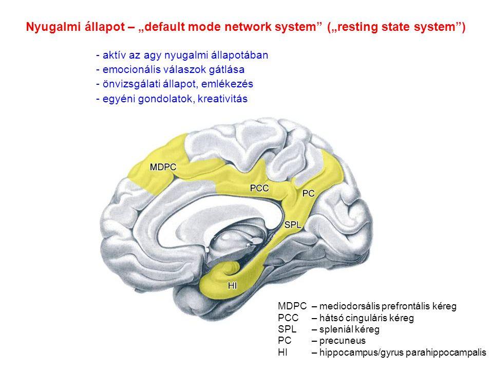 """Nyugalmi állapot – """"default mode network system (""""resting state system ) - aktív az agy nyugalmi állapotában - emocionális válaszok gátlása - önvizsgálati állapot, emlékezés - egyéni gondolatok, kreativitás MDPC– mediodorsális prefrontális kéreg PCC– hátsó cinguláris kéreg SPL– spleniál kéreg PC– precuneus HI– hippocampus/gyrus parahippocampalis"""