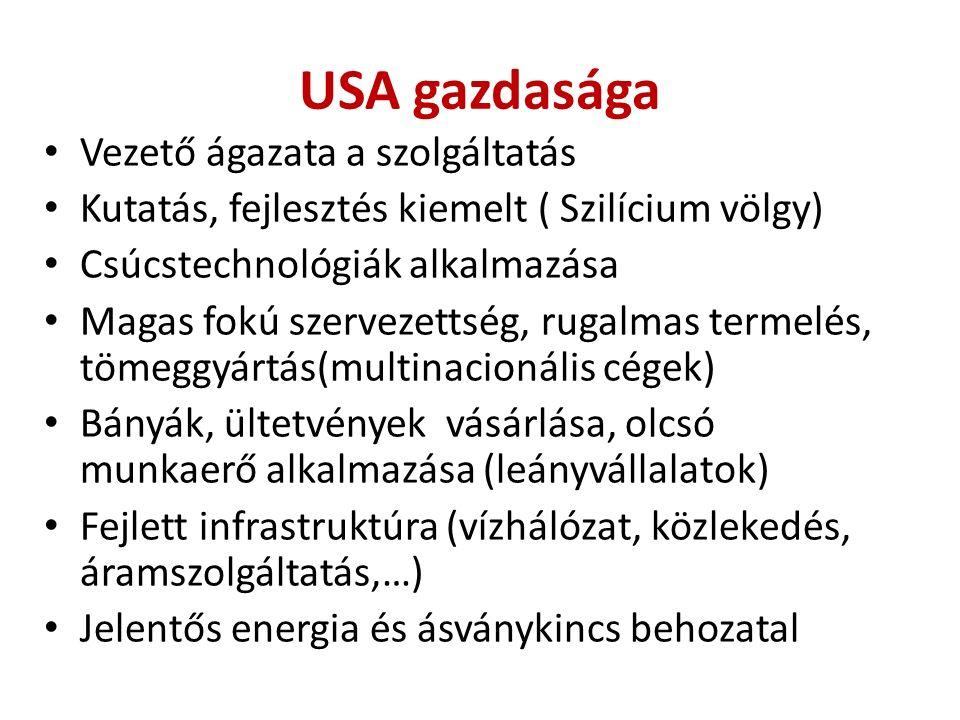 USA gazdasága Vezető ágazata a szolgáltatás Kutatás, fejlesztés kiemelt ( Szilícium völgy) Csúcstechnológiák alkalmazása Magas fokú szervezettség, rugalmas termelés, tömeggyártás(multinacionális cégek) Bányák, ültetvények vásárlása, olcsó munkaerő alkalmazása (leányvállalatok) Fejlett infrastruktúra (vízhálózat, közlekedés, áramszolgáltatás,…) Jelentős energia és ásványkincs behozatal