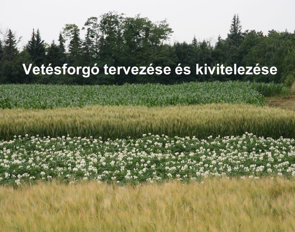 Vetésforgó Vetésterv növényi sorrend kialakításához őszi búza250 ha őszi árpa50 ha lucerna ebből új telepítés 300 ha 100 ha cukorrépa100 ha kukorica200 ha silókukorica100 ha összes igény1000 ha rendelkezésre áll900 ha különbség100 ha