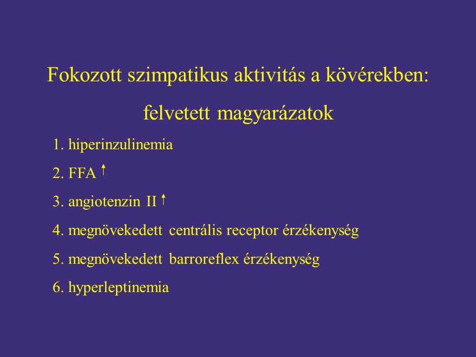 Fokozott szimpatikus aktivitás a kövérekben: felvetett magyarázatok 1. hiperinzulinemia 2. FFA 3. angiotenzin II 4. megnövekedett centrális receptor é