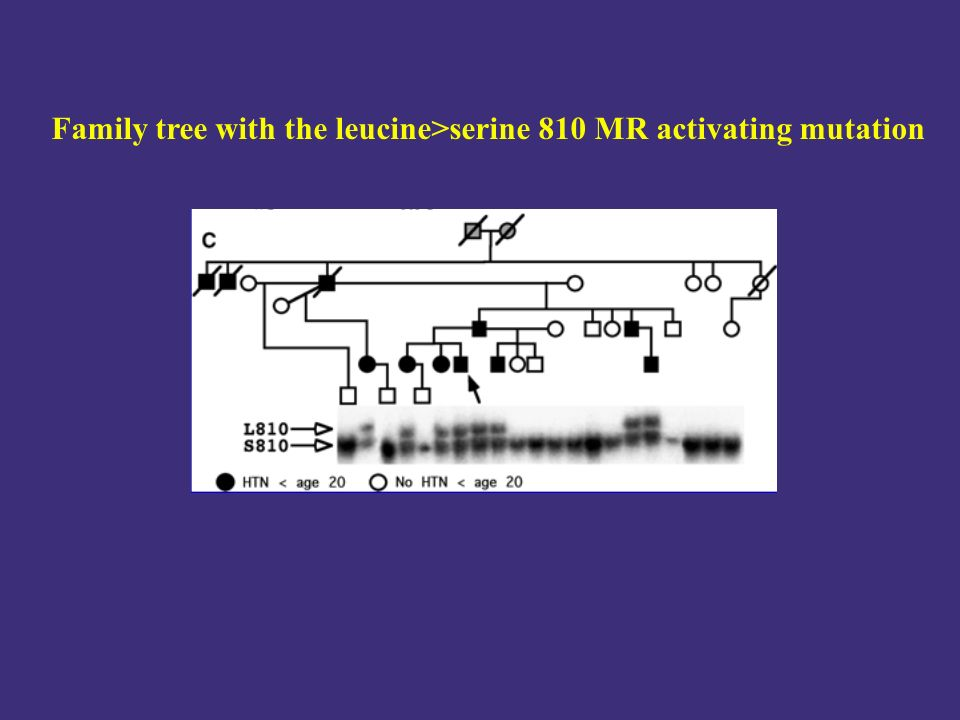 Family tree with the leucine>serine 810 MR activating mutation