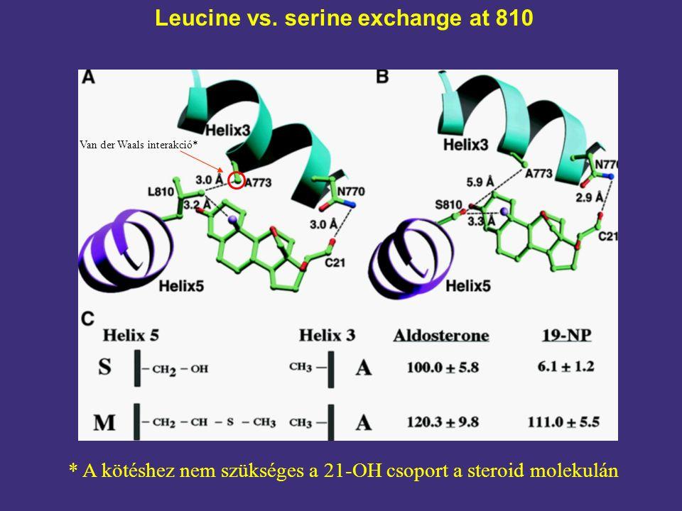 Leucine vs. serine exchange at 810 Van der Waals interakció* * A kötéshez nem szükséges a 21-OH csoport a steroid molekulán
