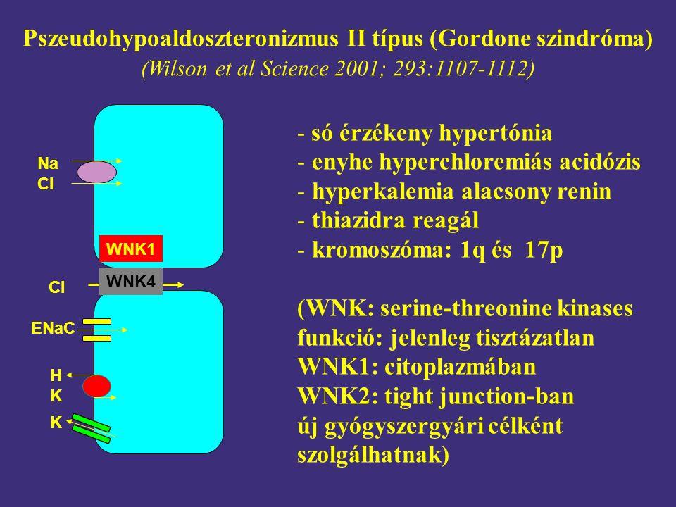 Pszeudohypoaldoszteronizmus II típus (Gordone szindróma) (Wilson et al Science 2001; 293:1107-1112) - só érzékeny hypertónia - enyhe hyperchloremiás a