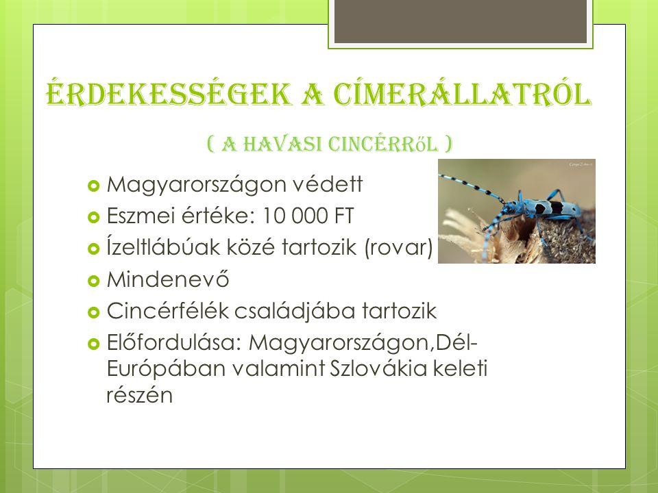 Érdekességek a címerállatról  Magyarországon védett  Eszmei értéke: 10 000 FT  Ízeltlábúak közé tartozik (rovar)  Mindenevő  Cincérfélék családjába tartozik  Előfordulása: Magyarországon,Dél- Európában valamint Szlovákia keleti részén ( A Havasi cincérr ő l )