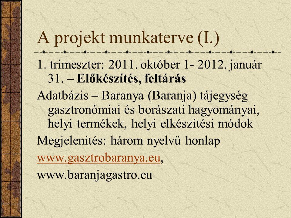 A projekt munkaterve (I.) 1. trimeszter: 2011. október 1- 2012.