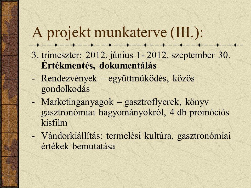 A projekt munkaterve (III.): 3. trimeszter: 2012.