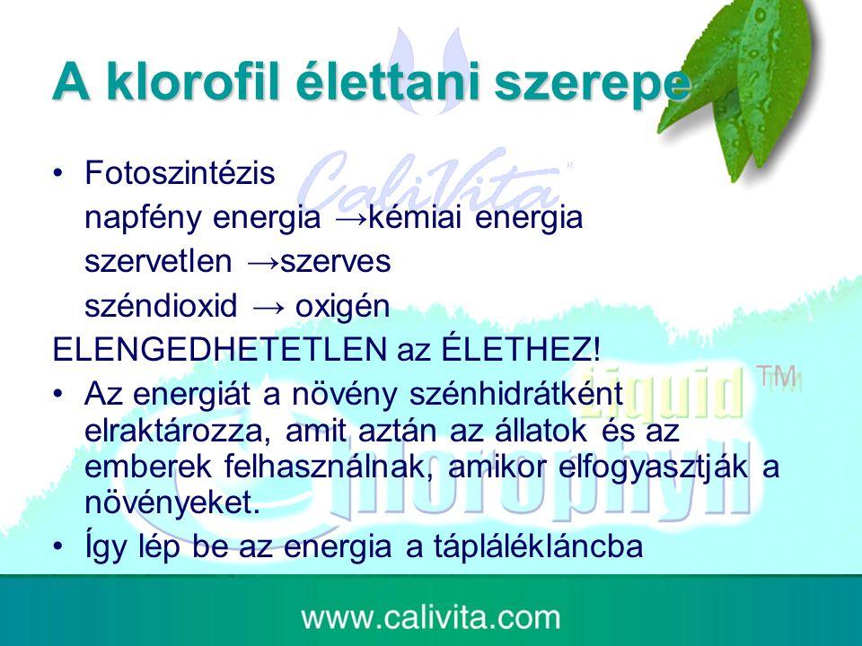 A klorofil élettani szerepe Fotoszintézis napfény energia →kémiai energia szervetlen →szerves széndioxid → oxigén ELENGEDHETETLEN az ÉLETHEZ.