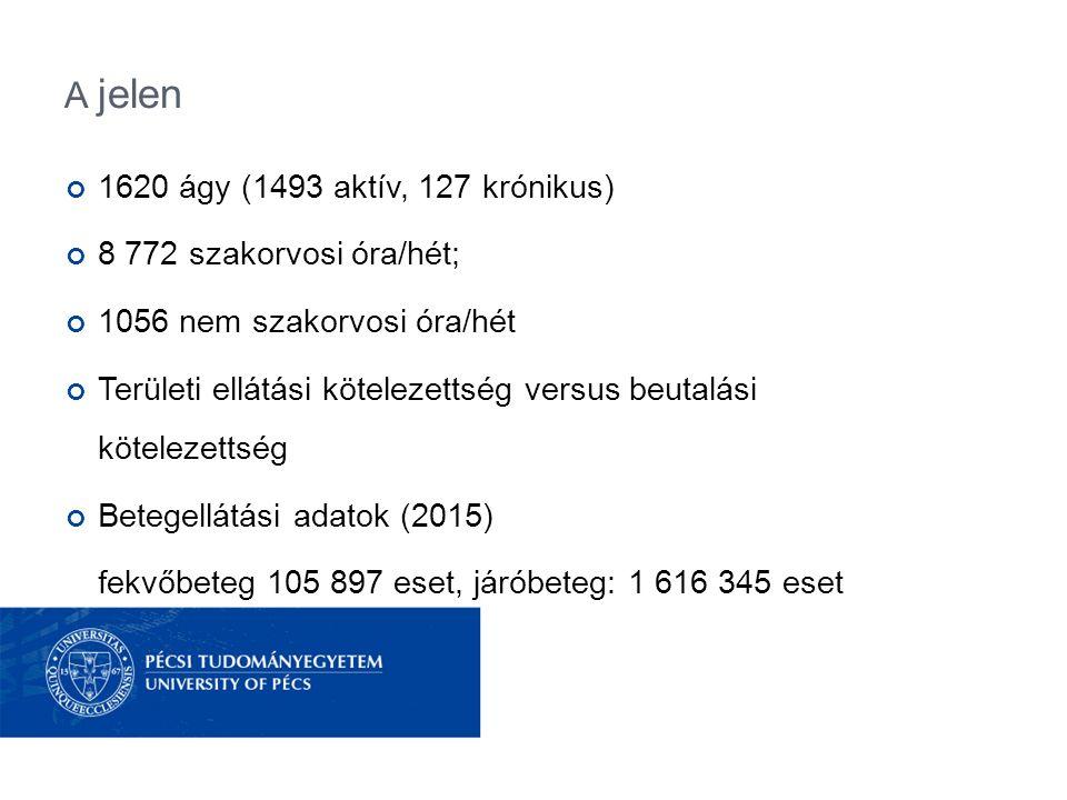 A jelen 1620 ágy (1493 aktív, 127 krónikus) 8 772 szakorvosi óra/hét; 1056 nem szakorvosi óra/hét Területi ellátási kötelezettség versus beutalási kötelezettség Betegellátási adatok (2015) fekvőbeteg 105 897 eset, járóbeteg: 1 616 345 eset