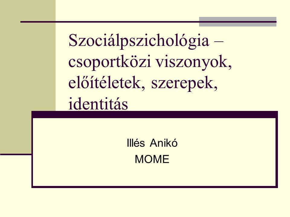 Szociálpszichológia – csoportközi viszonyok, előítéletek, szerepek, identitás Illés Anikó MOME