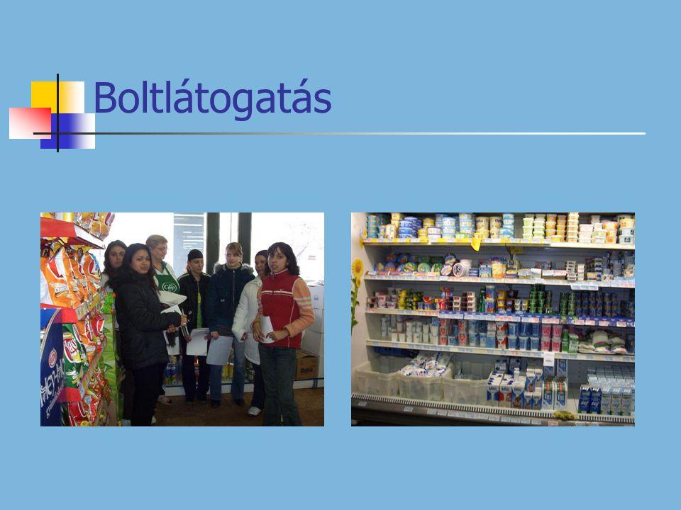 Projekt bemutató az iskolában Tapasztalatok: Hasznos, mert alkalmazásával több információhoz lehet jutni.