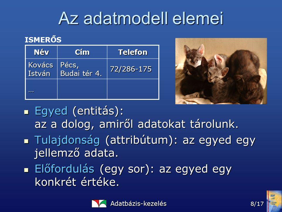 Adatbázis-kezelés 8/17 Az adatmodell elemei Egyed (entitás): az a dolog, amiről adatokat tárolunk.