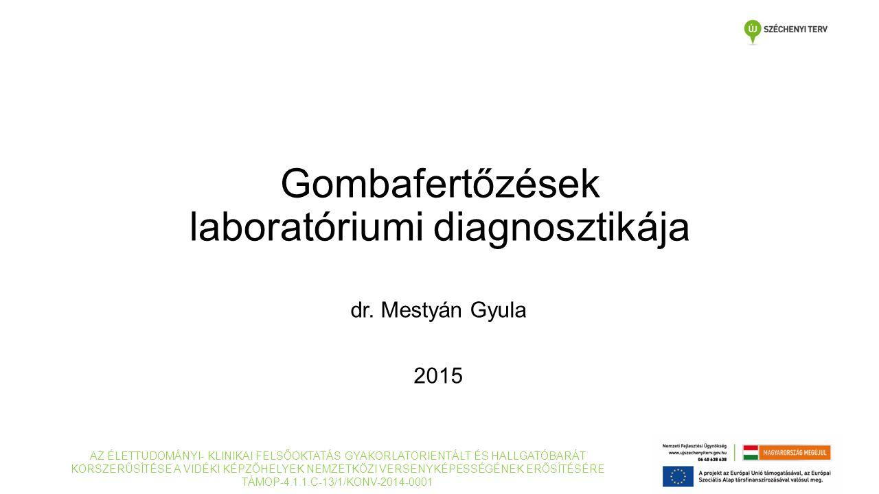 Gombafertőzések laboratóriumi diagnosztikája dr. Mestyán Gyula 2015 AZ ÉLETTUDOMÁNYI- KLINIKAI FELSŐOKTATÁS GYAKORLATORIENTÁLT ÉS HALLGATÓBARÁT KORSZE