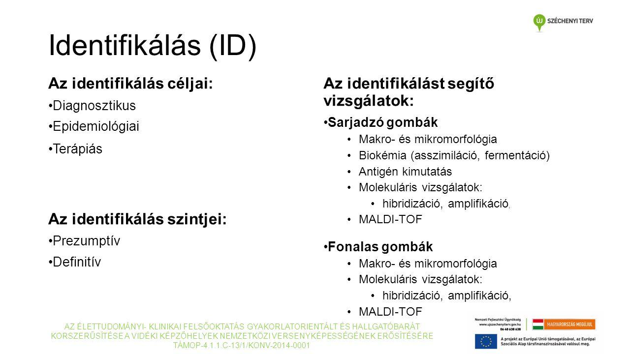 Az identifikálás céljai: Diagnosztikus Epidemiológiai Terápiás Az identifikálás szintjei: Prezumptív Definitív AZ ÉLETTUDOMÁNYI- KLINIKAI FELSŐOKTATÁS