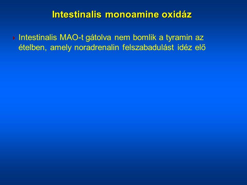  Intestinalis MAO-t gátolva nem bomlik a tyramin az ételben, amely noradrenalin felszabadulást idéz elő Intestinalis monoamine oxidáz