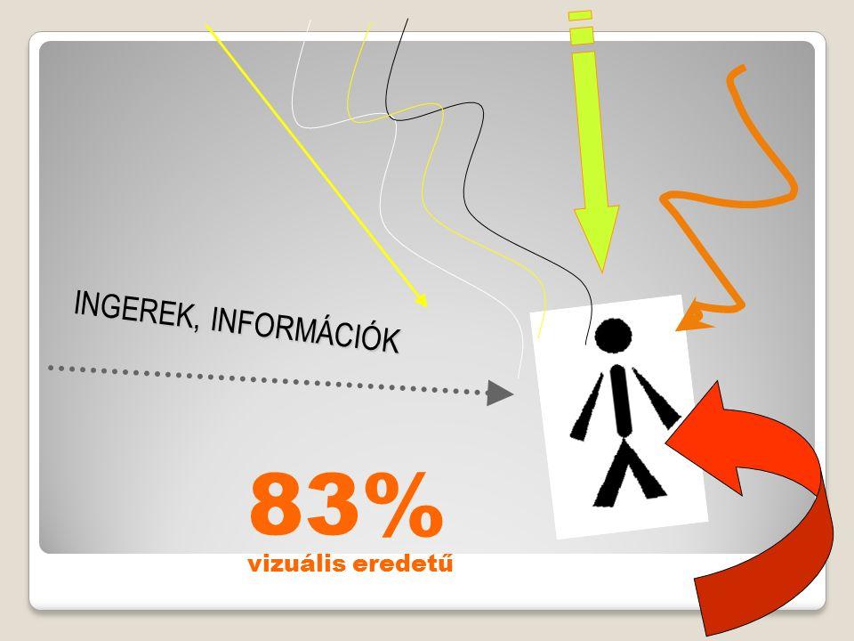 83% vizuális eredetű INGEREK, INFORMÁCIÓK
