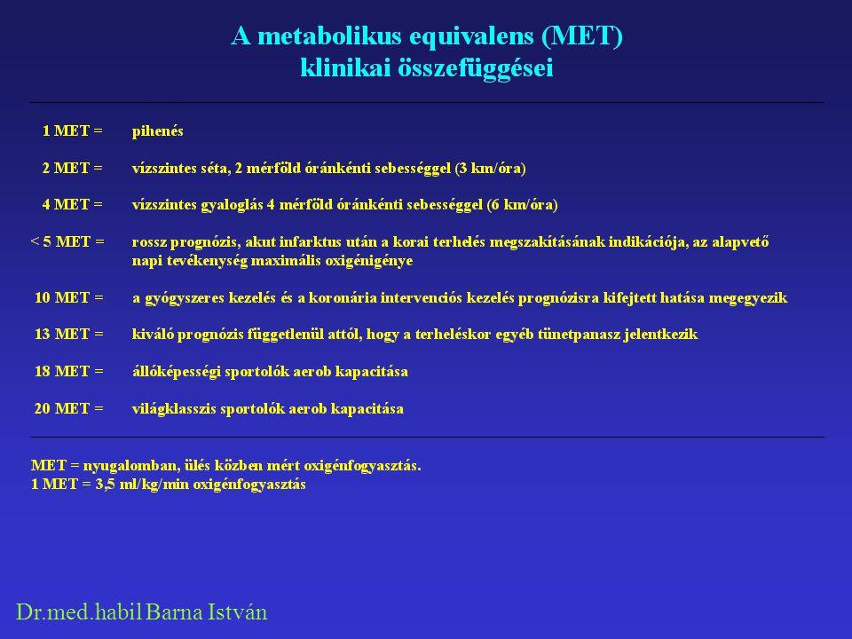 Dr.med.habil Barna István