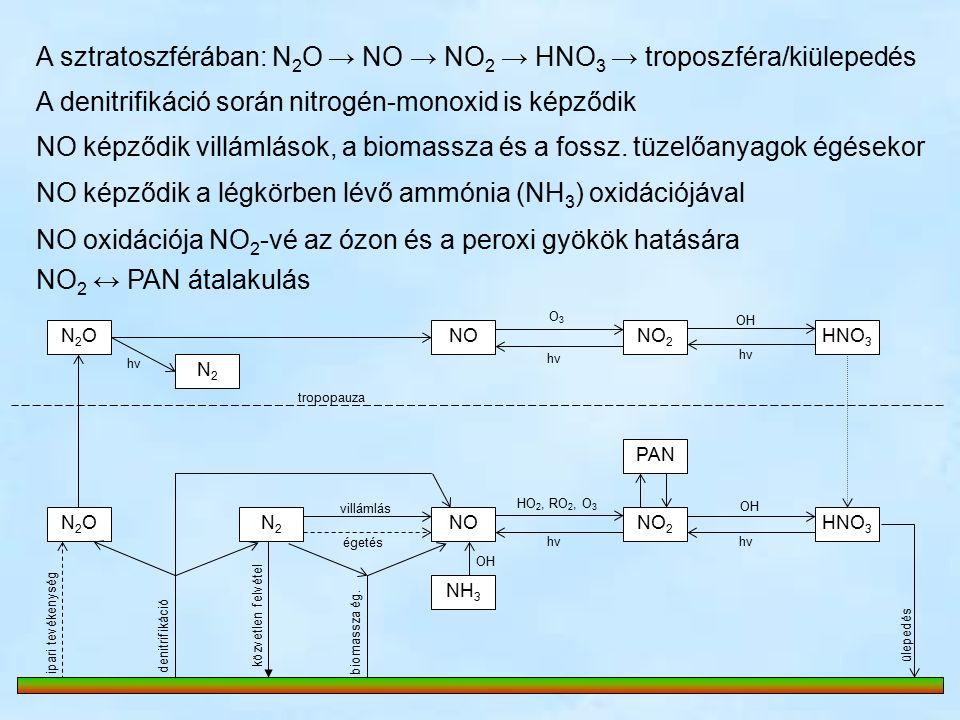 A sztratoszférában: N 2 O → NO → NO 2 → HNO 3 → troposzféra/kiülepedés N2ON2ONONO 2 NON2ON2ON2N2 NH 3 N2N2 O3O3 hνhν hνhν HNO 3 OH villámlás égetés HO 2, RO 2, O 3 hνhν OH denitrifikáció ipari tevékenység biomassza ég.