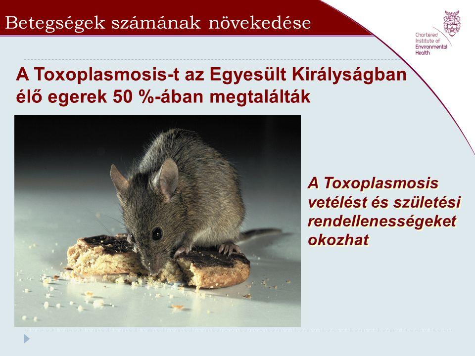 Betegségek számának növekedése * No published figures available A Toxoplasmosis-t az Egyesült Királyságban élő egerek 50 %-ában megtalálták A Toxoplas