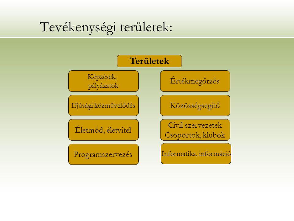 A humán erőforrások jellemzése: KOMPETENCIA:KOMPETENCIA: A szakmai állomány kompetenciái alapjaiban alkalmasak arra, hogy a kitűzött célokat megvalósítsa az intézmény.