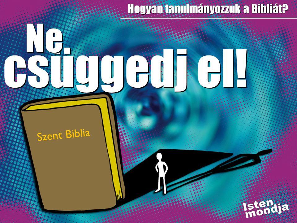 Hogyan tanulmányozzuk a Bibliát? csüggedj el! Szent Biblia Ne
