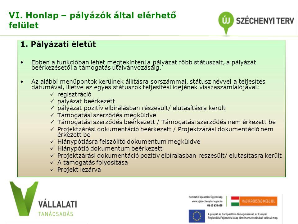 VI. Honlap – pályázók által elérhető felület 1.