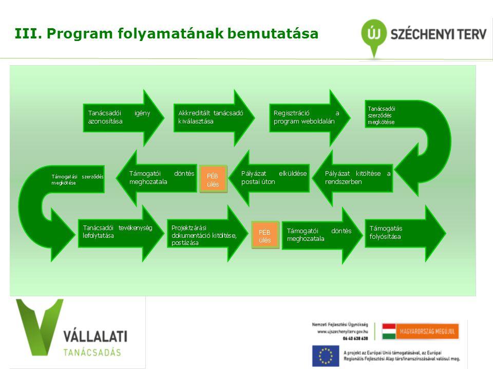 III. Program folyamatának bemutatása