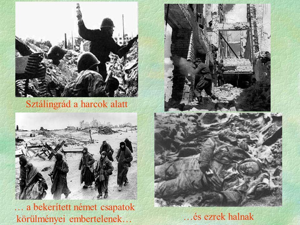 …és ezrek halnak értelmetlenül … a bekerített német csapatok körülményei embertelenek… Sztálingrád a harcok alatt