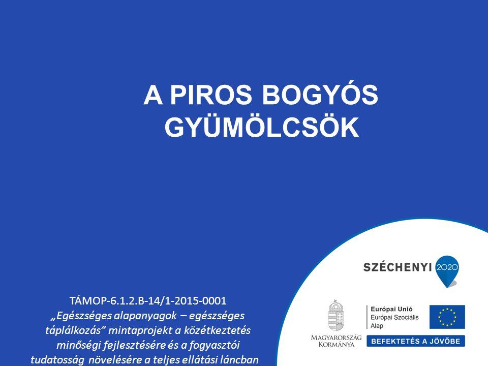 """A PIROS BOGYÓS GYÜMÖLCSÖK TÁMOP-6.1.2.B-14/1-2015-0001 """"Egészséges alapanyagok – egészséges táplálkozás mintaprojekt a közétkeztetés minőségi fejlesztésére és a fogyasztói tudatosság növelésére a teljes ellátási láncban"""