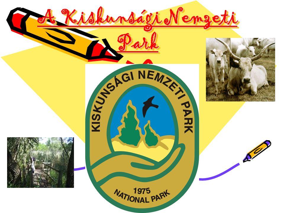 A Kiskunsági Nemzeti Park