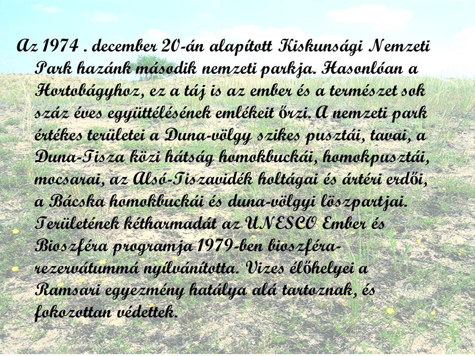 Az 1974. december 20-án alapított Kiskunsági Nemzeti Park hazánk második nemzeti parkja.