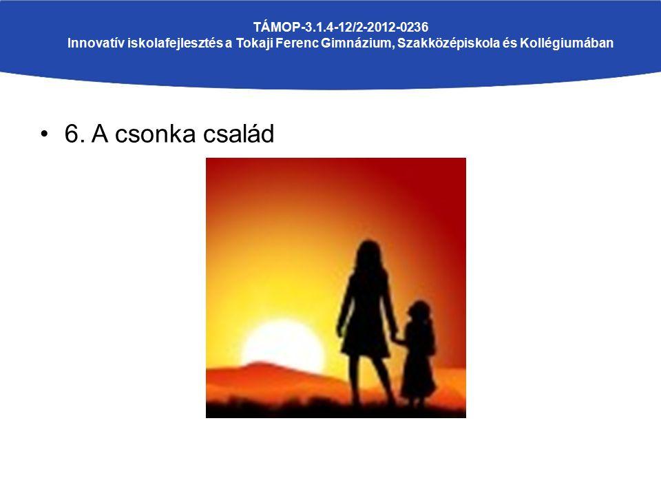 6. A csonka család TÁMOP-3.1.4-12/2-2012-0236 Innovatív iskolafejlesztés a Tokaji Ferenc Gimnázium, Szakközépiskola és Kollégiumában