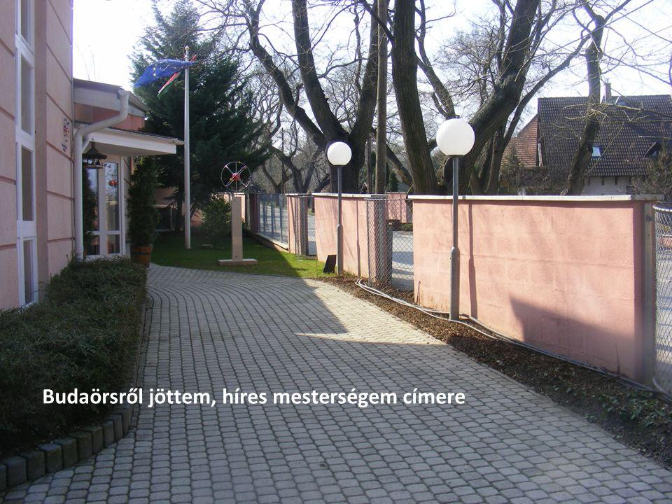 Szinergia Kreatív együttműködés Budaörsről jöttem, híres mesterségem címere