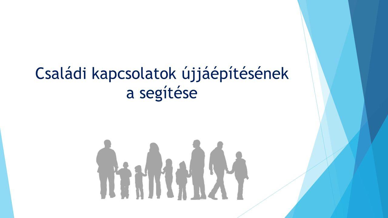 """""""Az a tény, ha ma Magyarországon vagy bárhol a világban egy embert a bíróság elítél, és büntetés végrehajtási intézetbe kerül az soha nem csak és kizárólag az adott egyént érinti, a büntetéssel együtt járó nehézségeket ugyanúgy megéli az adott személy családja, környezete, barátai és nem utolsó sorban a gyerekei is."""