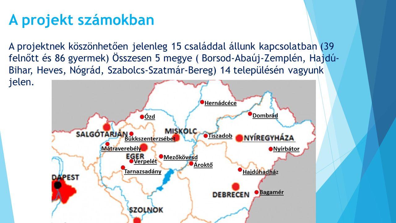 A projekt számokban A projektnek köszönhetően jelenleg 15 családdal állunk kapcsolatban (39 felnőtt és 86 gyermek) Összesen 5 megye ( Borsod-Abaúj-Zem
