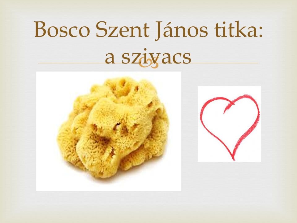  Bosco Szent János titka: a szivacs