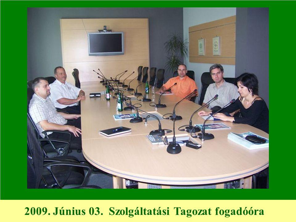 2009. Június 03. Szolgáltatási Tagozat fogadóóra