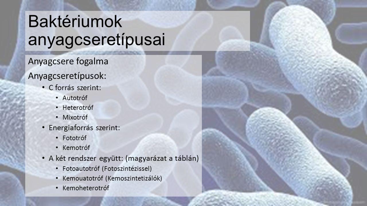 Baktériumok életmódja Baktériumok táplálkozási kapcsolataik alapján lehetnek: (példák a táblán) Termelők Lebontók (Szaprofiták) Élősködők (Paraziták) Kölcsönösen előnyösen együttműködők (Szimbionták) (A szimbiózis lényege a táblán)