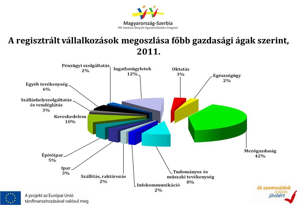 A regisztrált vállalkozások megoszlása főbb gazdasági ágak szerint, 2011.