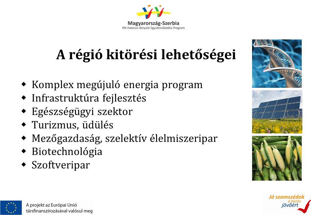 A régió kitörési lehetőségei  Komplex megújuló energia program  Infrastruktúra fejlesztés  Egészségügyi szektor  Turizmus, üdülés  Mezőgazdaság, szelektív élelmiszeripar  Biotechnológia  Szoftveripar