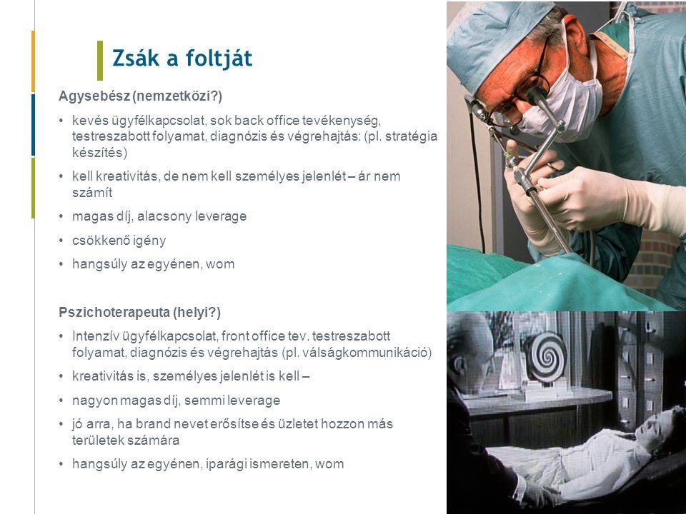 Zsák a foltját Agysebész (nemzetközi ) kevés ügyfélkapcsolat, sok back office tevékenység, testreszabott folyamat, diagnózis és végrehajtás: (pl.
