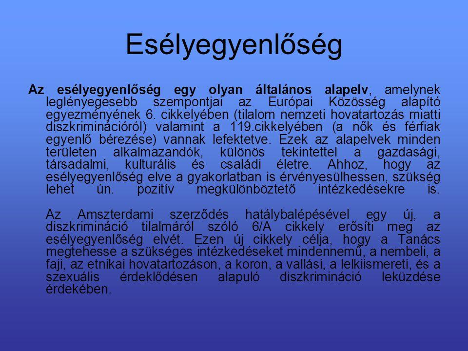 Esélyegyenlőség Az esélyegyenlőség egy olyan általános alapelv, amelynek leglényegesebb szempontjai az Európai Közösség alapító egyezményének 6.