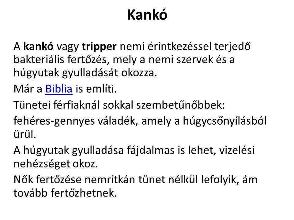 Kankó A kankó vagy tripper nemi érintkezéssel terjedő bakteriális fertőzés, mely a nemi szervek és a húgyutak gyulladását okozza.