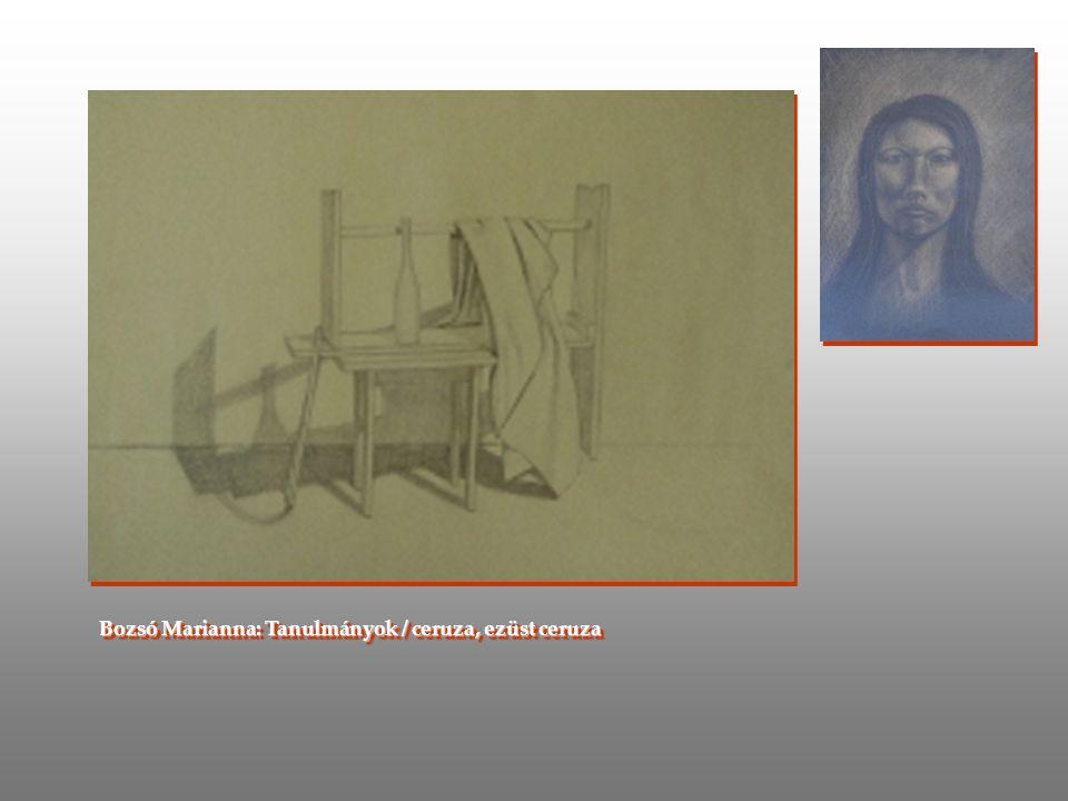 Bozsó Marianna: Tanulmányok / ceruza, ezüst ceruza